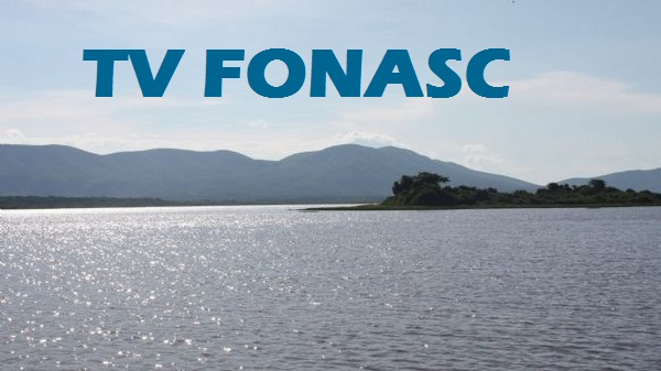 TV  FONASC-