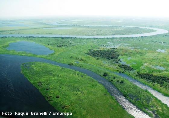 RIO PARAGUAI Fonasc assina e apoia Moção da VI Oficina de Avaliação do Estado de Conservação de Peixes Continentais das Ecorregiões dos rios Paraguai e Uruguai